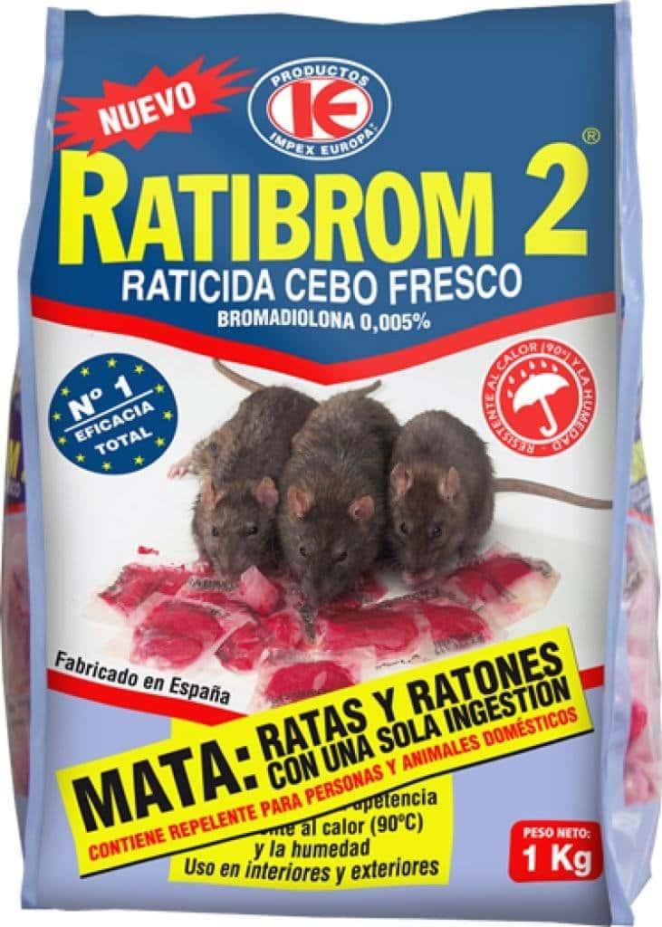 Matarratas como exterminar y matar ratas definitivamente - Como acabar con las ratas en mi casa ...
