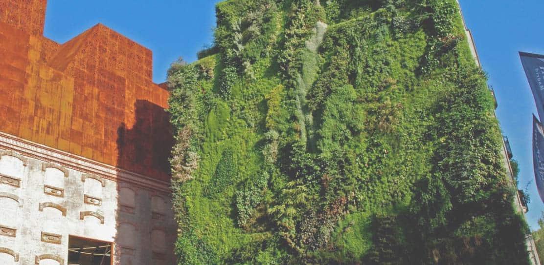 limpieza-jardines-verticales