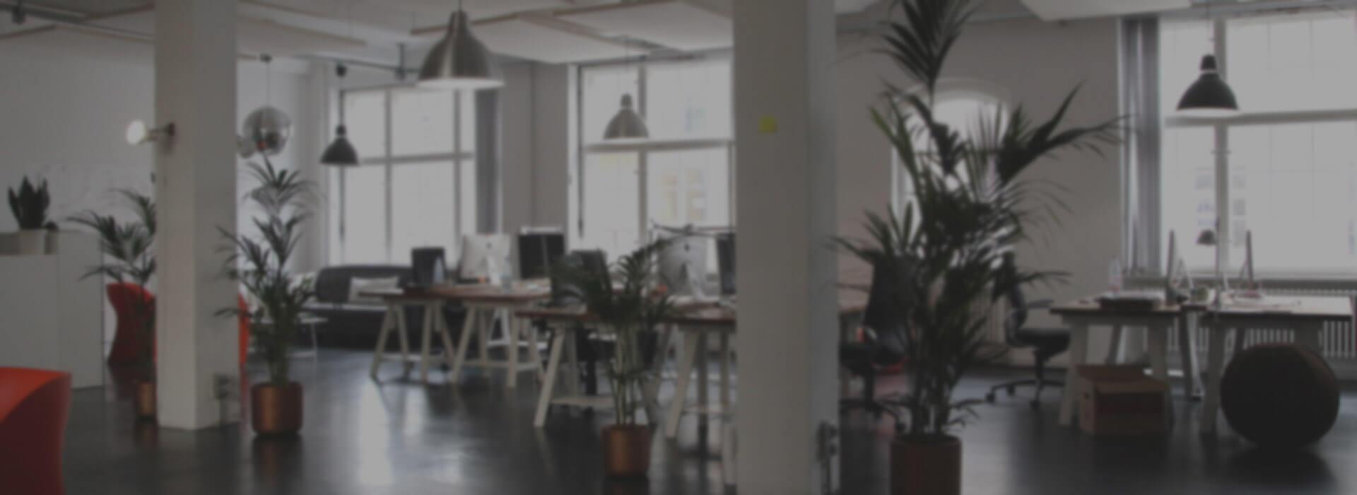 Mantenimiento y limpieza de oficinas madrid limpiezas lm2 for Empresas de limpieza de oficinas en madrid
