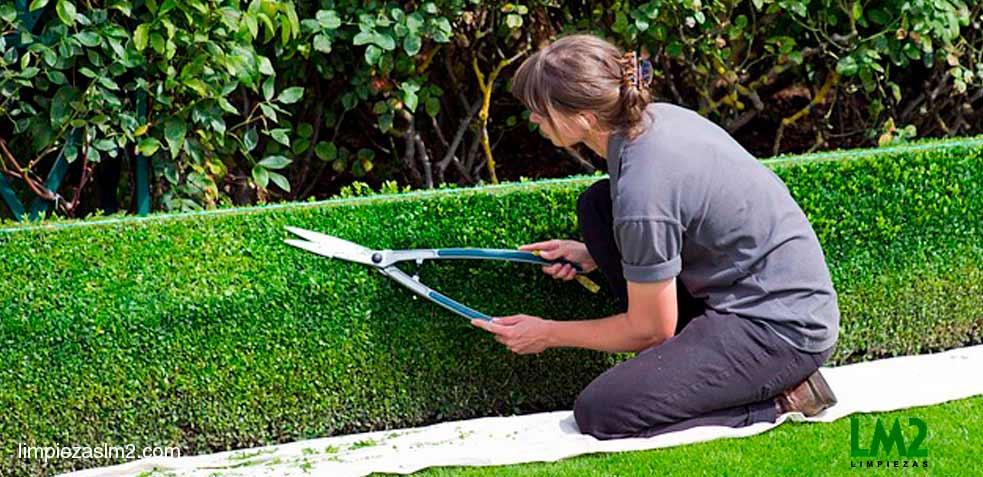 limpieza_zonas_verdes