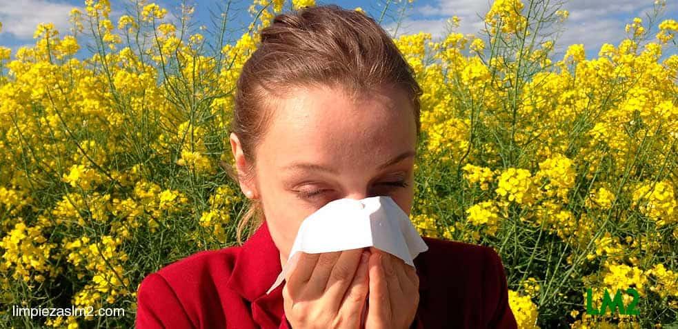 alergias al polvo